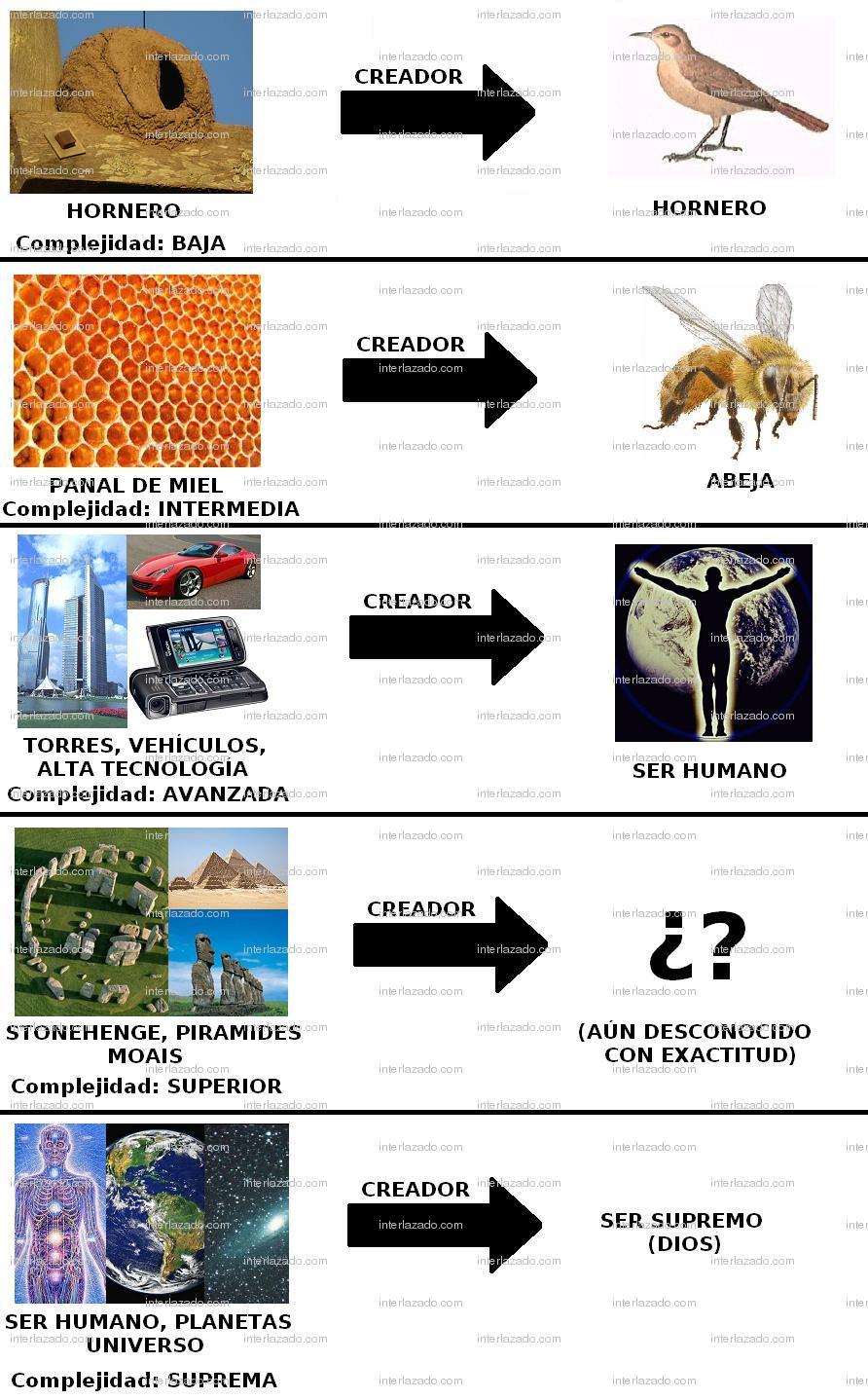 Teoría de la Creación