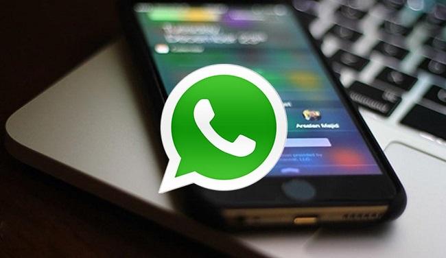 WhatsApp acceso directo contacto