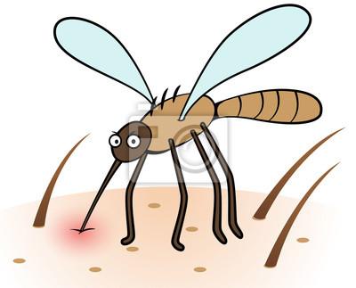 Cómo eliminar los mosquitos