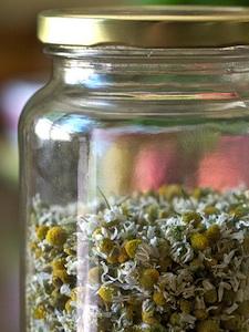 Como hacer para conservar hierbas