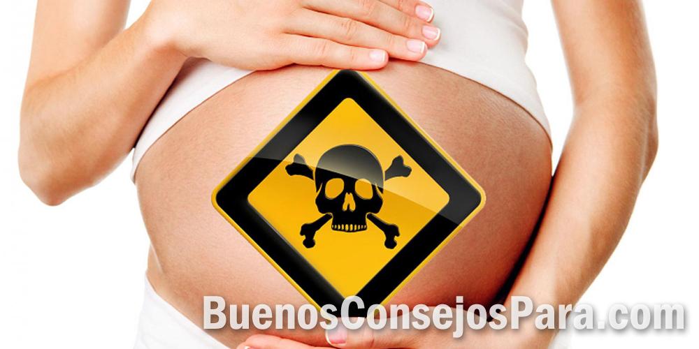 toxico embarazo